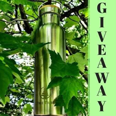 Eco Water Bottle Giveaway - TreeTribe